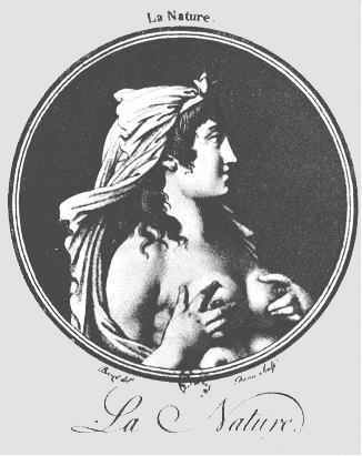 Континуальная Программа Аристотеля Основана На Идеях