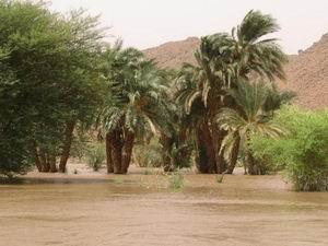 Паводок на Ниле