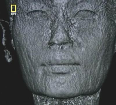 Известняковой заготовка бюста Нефертити-3