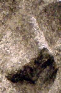 Нос Нефертити-1