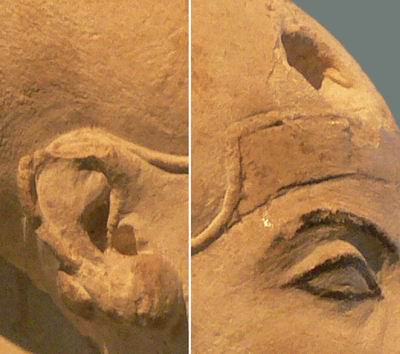 Повреждения на ушах и вокруг отверстия закрашены коричневой краской