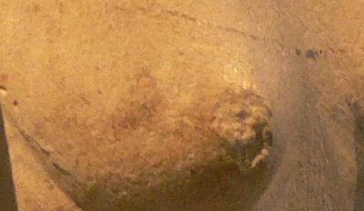 Грудь Нефертити-10 снизу покрашена более темной краской, имитирующей тень