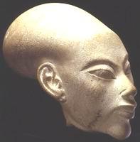 Голова Ж