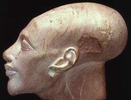 Голова В