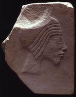 Нефертити (f)