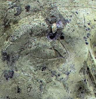 Лицо Эхнатона (крупно)
