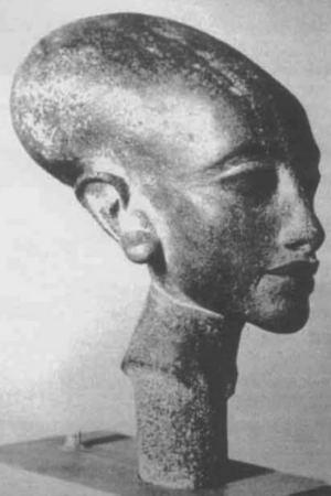 Шейный шип у головы одной из дочерей царицы.